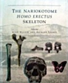 Nariokotome Homo Erectus Skeleton by Alan…