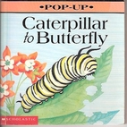 Caterpillar to Butterfly (Play with) by…