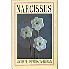 Narcissus by Michael Jefferson-Brown