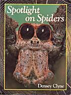 Spotlight on Spiders (Densey Clyne's Small…
