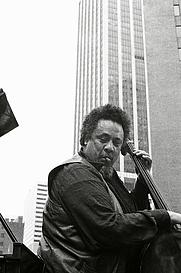 Author photo. Tom Marcello, July 4, 1976