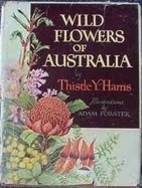 Wild flowers of Australia by Thistle Yolette…