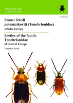 Beetles of the family Tenebrionidae of…