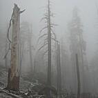 Mount Eerie pts. 6 & 7 EP by Mount Eerie