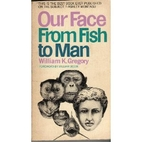 Our face from fish to man: a portrait…