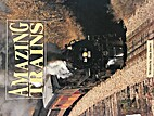 Amazing Trains (Pair-It Books) by Alan…