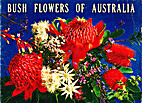 Bush Flowers of Australia by Rosalie Trower