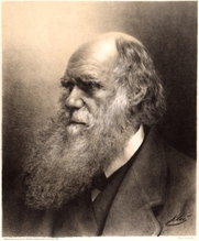 Author photo. Lithograph - Karl Klietsch / Photo © <a href=&quot;http://www.bildarchivaustria.at&quot;>ÖNB/Wien</a>