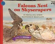 Houghton Mifflin Soar to Success: Falcons…