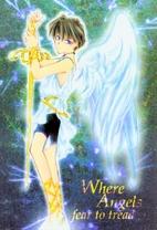Where Angels fear to tread by Nishikanda…