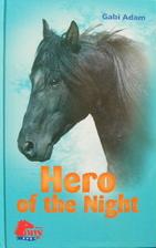 Hero of the Night by Gabi Adam
