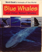 Blue Whales And Other Baleen Whales (World…
