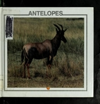 Antelopes (African Animal Discovery Library)…