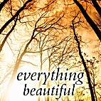 Everything Beautiful: And Other Stories by…