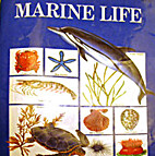 My Picture Library: Marine Life by…