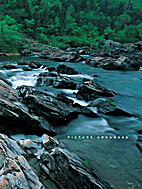 Picture Arkansas by A. Ross Cranford