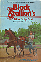 The Black Stallion's Blood Bay Colt…