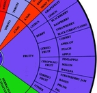The wine aroma wheel by Ann C. Noble
