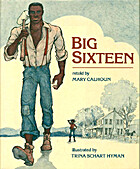 Big Sixteen by Mary Calhoun
