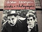 Words & photographs by Aram Saroyan