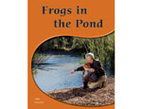 Frogs in the Pond * by Julie Haydon