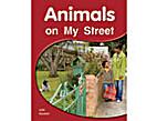 Animals on My Street by Julie Haydon