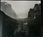 Ansel Adams: In the Lane Collection by Karen…