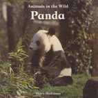 Panda by Mary Hoffman