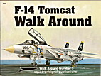 F-14 Tomcat - Walk Around No. 3 by Lou…