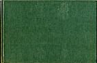 Brush Script by Donald Stevens