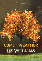 Comet Weather by Liz Williams