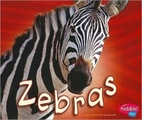 Zebras (Pebble Plus: African Animals) by…