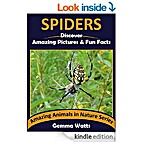 SPIDERS: Discover Amazing Pictures and Fun…