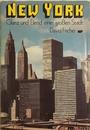New York, Glanz und Elend einer großen Stadt - David Fischer