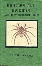 Common British beetles and spiders and how…