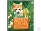 Cats' Kingdom by Jeremy Angel