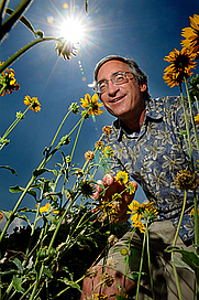 Author photo. Stephen L. Buchmann, Entomologist, University of Arizona
