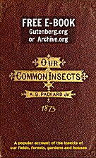 Our common insects: a popular account of the…