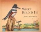 What bird is it? by Anna Pistorius