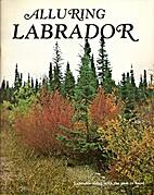 Alluring Labrador : Labrador today with the…