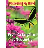 From Caterpillar to Butterfly (Discovering…