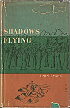 Shadows flying by John Evans