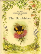 Bumblebee (First Look at Nature) by Angela…
