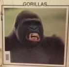 Gorillas (Monkey Discovery Library) by Lynn…