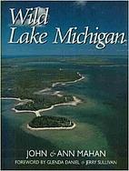 Wild Lake Michigan by John Mahan