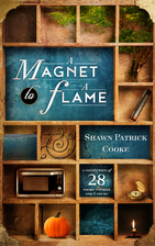 A Magnet to a Flame by Shawn Patrick Cooke
