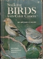 Stalking Birds with Color Camera by Arthur…