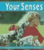 Your Senses (Pebble Books: The Senses) by…