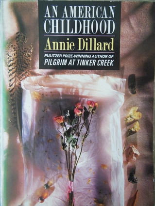 an american childhood snow day annie dillard An american childhood snow day annie dillard annie dillard's memoir, an american childhood, details the author's growing up years and.