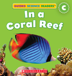 In a Coral Reef by Violet Findley